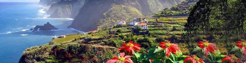 Ruta en coche de alquiler por bosques tropicales de Madeira